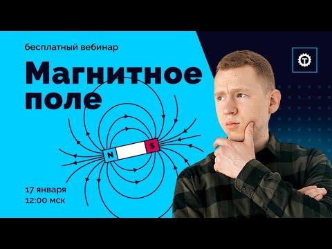 Магнитное поле | ЕГЭ Физика | Николай Ньютон