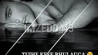 Bechain is dil ko tumne sambhala tha || song for whatsapp status