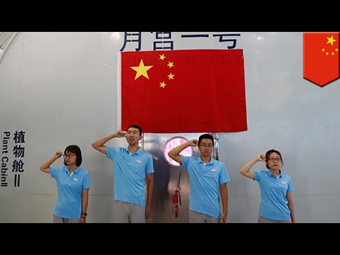 Lunar Palace 1: Students live in sealed lab for 200 days in China for moon mission - TomoNews