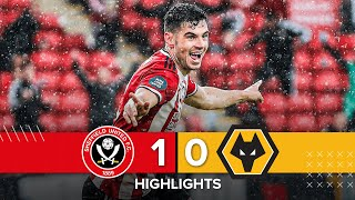 Sheffield United 1-0 Wolves | Premier League Highlights | John Egan Last Minute Header Seals Epl Win