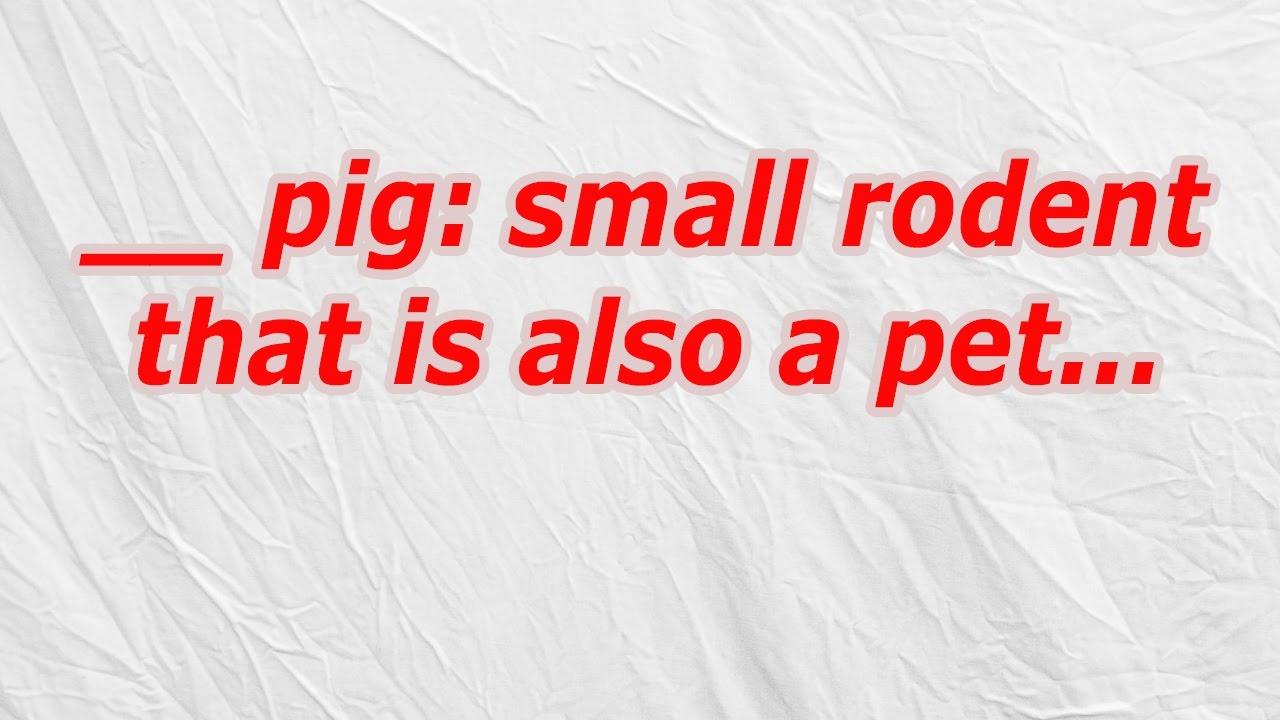 Rodent Fogger