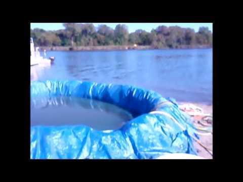 Lucky Dog South Beach Hot Tub Sand Jacuzzi