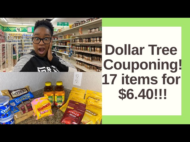 Dollar Tree Couponing | 17 Items for $6.40! Krys the Maximizer