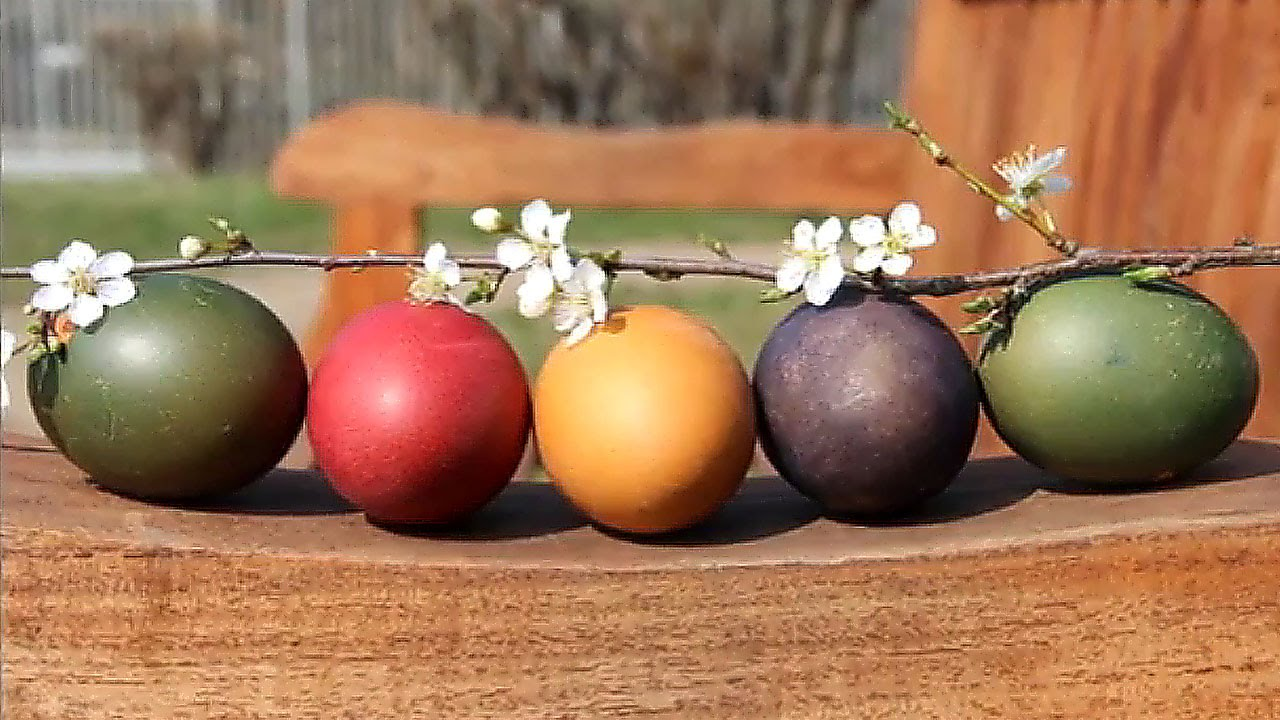 Charmant Farbe Ostereier Mit Lebensmittelfarbe Fotos - Druckbare ...