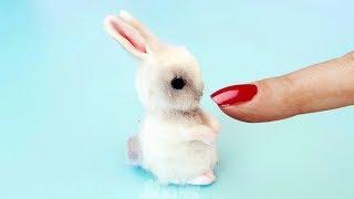 🐇Самый Маленький Кролик В Мире Своими Руками Как Слепить Зайчика DIY Реалистичный зайчик