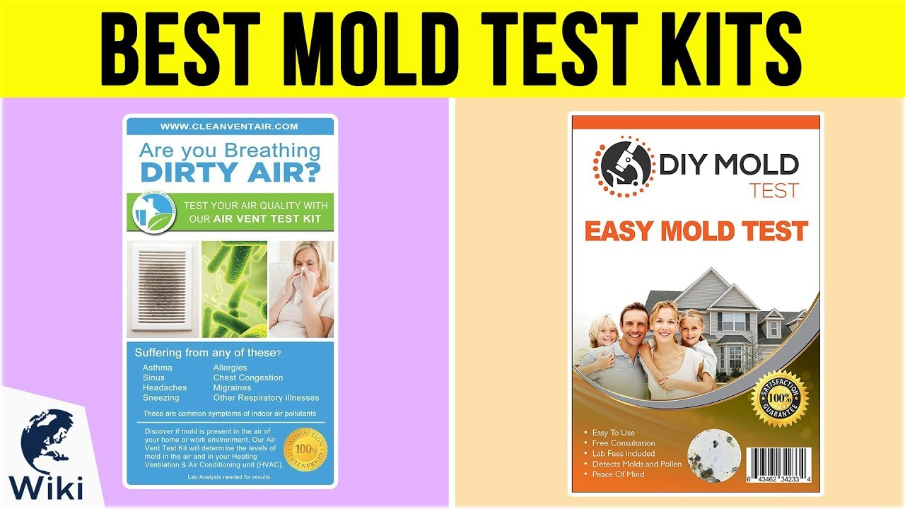 7 Best Mold Test Kits 2019