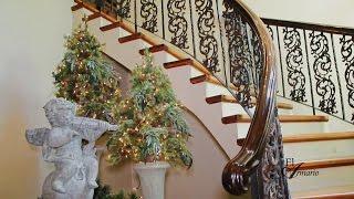 Tour de casa en Navidad, los invito a disfrutarla!