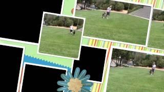 Flat Circle Work For Agility: Clicker Dog Training