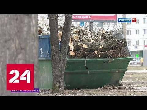 Алтуфьево лишают парка - Россия 24