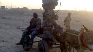 سكسي عراقي