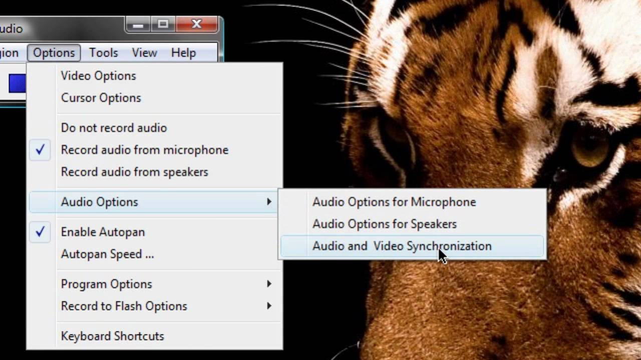 HD Tutorial: Camstudio Audio and Video Synchronization