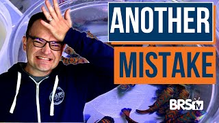 40 Beginner Mistakes of Reef Tank Owners | Save Time and Money with Matthew of My First Fish Tank