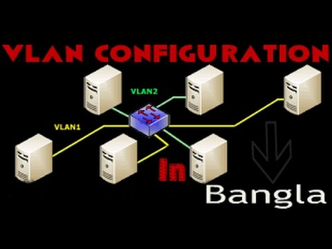VLAN and Trunks Configuration In Bangla  Step By Step