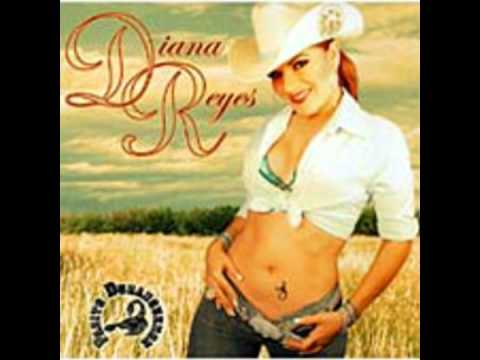 Ambicion - Diana Reyes