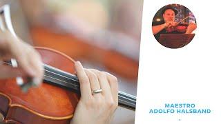 Clases Básicas de Viola. Aprender  s tocar instrumentos de cuerda. Músicos y Orquesta