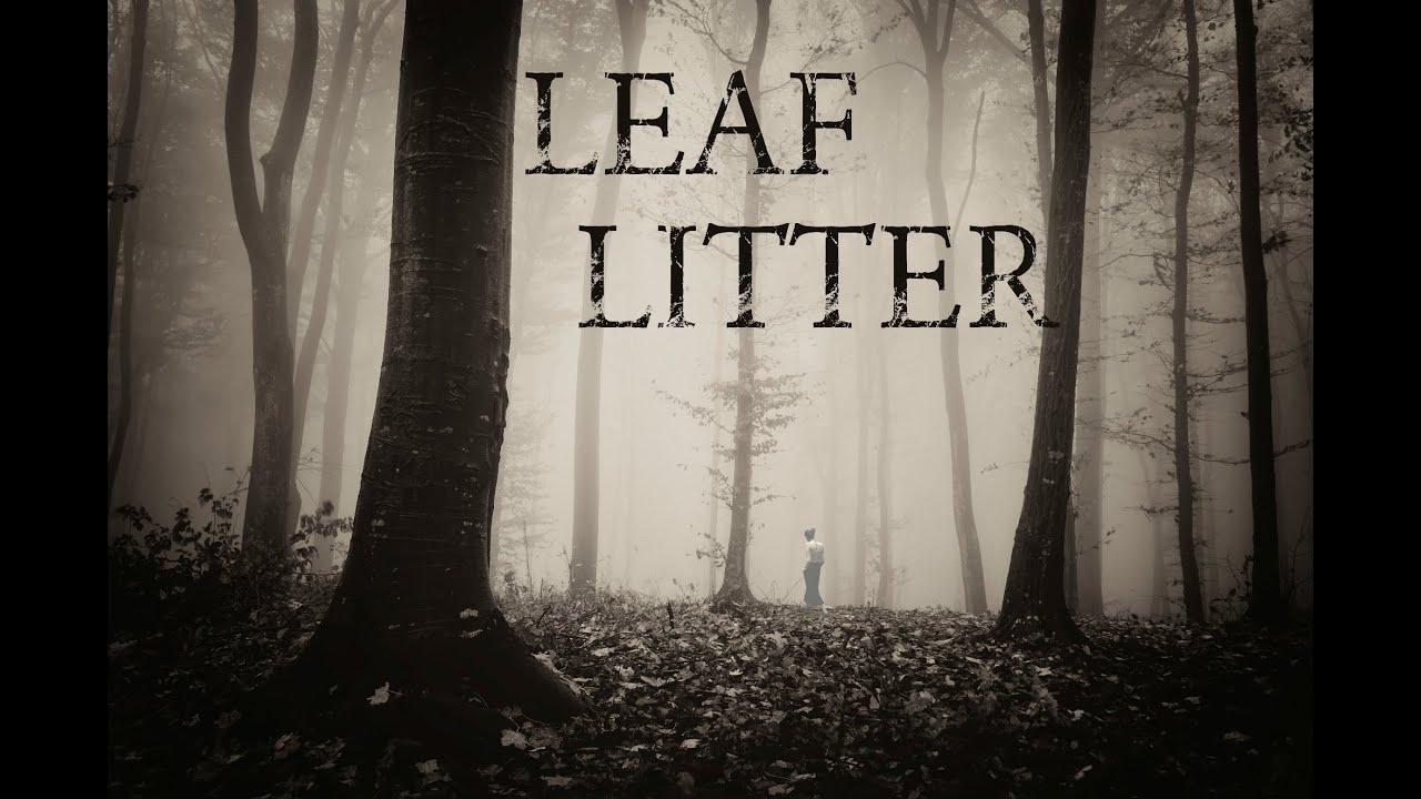 Leaf Litter AUDIO SERIES