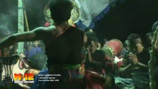 Download Rogo Samboyo Putro Lagu Jaranan Rijik 1289 - Kelayung layung
