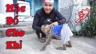 NVL | Thử Mặc Đồ Cho Khỉ Và Cái Kết Dở Khóc Dở Cười | Mua Đồ Tặng Khỉ