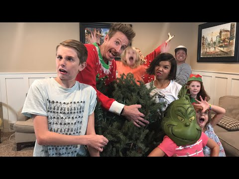 HELP US SET UP THE CHRISTMAS TREE WITH April & Davey