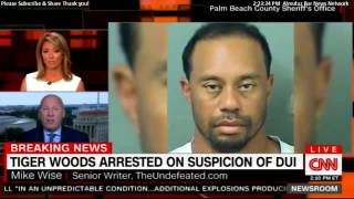 tiger woods dui - tiger woods arrested - tiger woods mug shot