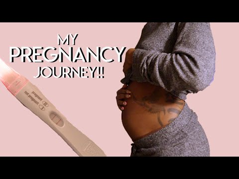 PREGNANCY VLOG PT. 1 | Finding out, Telling Family, 1st Trimester | Tiffany Laibhen