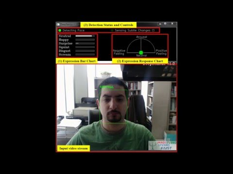 DeepSensus®: a deep learning based facial expression recognition demo system