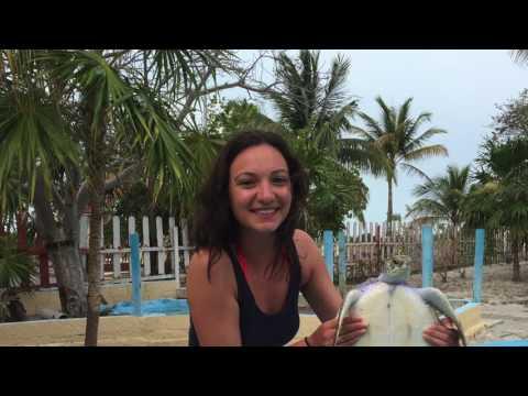 Cuba Sailing April 15th-22th, 2017