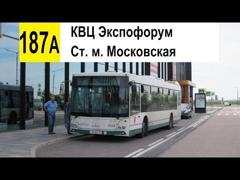 """Автобус 187а """"КВЦ """"Экспофорум"""" - ст. м. """"Московская"""""""