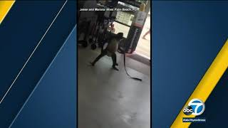 VIDEO: Pet monkey attacks employee at Florida Home Depot I ABC7