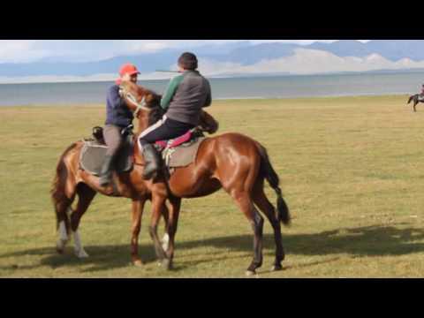 Horse Wrestling in Kyrgyzstan