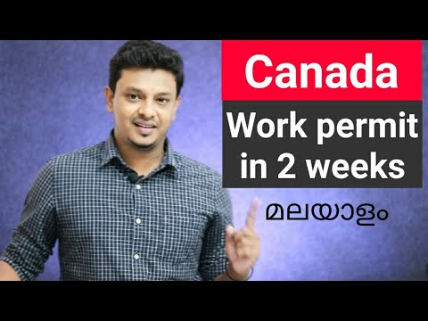 Canada Work Permit In 2 Weeks. Global Talent Stream ( GTS) Explained In  Malayalam