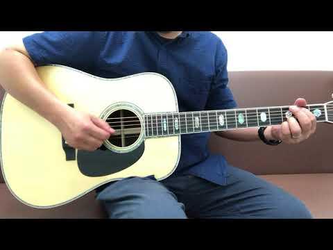 Headway HD-450 Custom Jacaranda by Momose Yasuo  [LAST GUITAR]