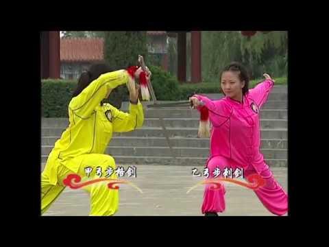 Jianshu 6 duan wei Chinese Wushu Duanwei 剑 straight sword