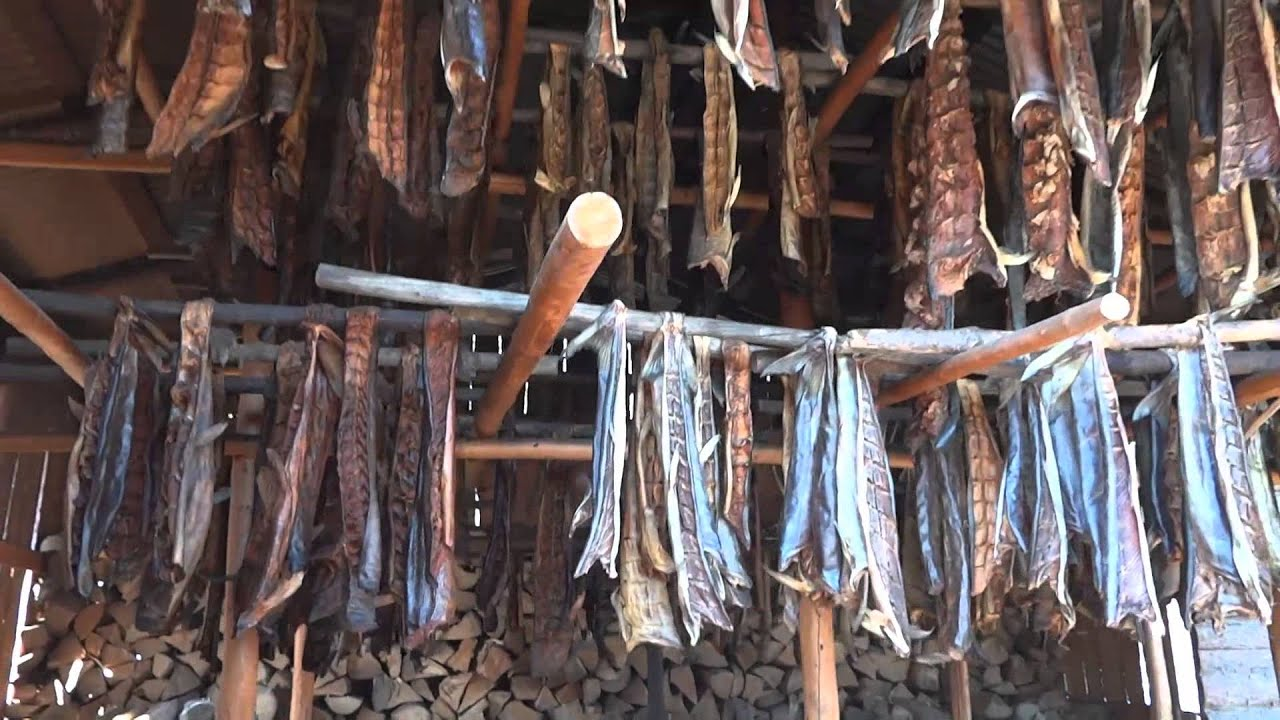 Traditional smoked salmon method in alaska youtube for Alaskan cuisine history