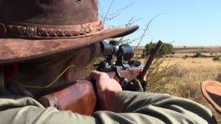 Buone e cattive ragioni alla base della caccia grossa in Africa