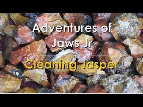 Cleaning Jasper
