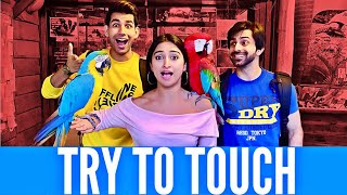 Try to Touch | Rimorav Vlogs