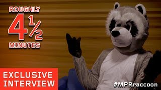 MPR Raccoon Exclusive Interview | Roughly 4 1/2 Minutes | Part One