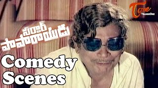 Sardar Papa Rayudu  Movie Comedy Scenes || Back to Back ||  NTR || Sridevi