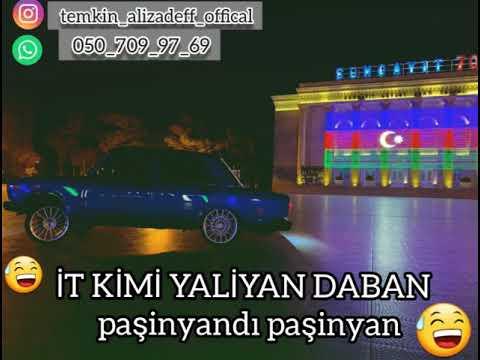 Dagitdi Dagitdi Azerbaycan 2021 TikTok'da Haminin Axtardiqi Mahni (Tam Versiya)