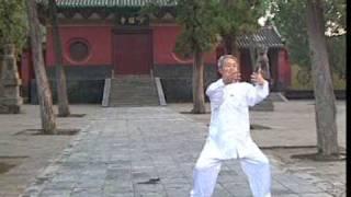 Shaolin Rou Quan by Liu Zhen Hai