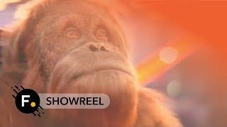 Foundry 2016 | Showreel