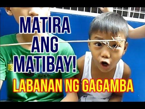 Download FIGHT UNTIL THE END! Laban Ng Gagamba, Matira Ang Matibay