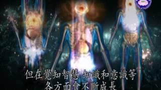 探索靈魂的體真相 -1
