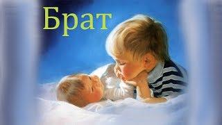 Брат. Моя семья. Первые знания малыша. Познавательное видео для детей.