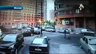 видео Машина в розыске: что делать автовладельцу?