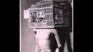 The Shroud - Caged Bird
