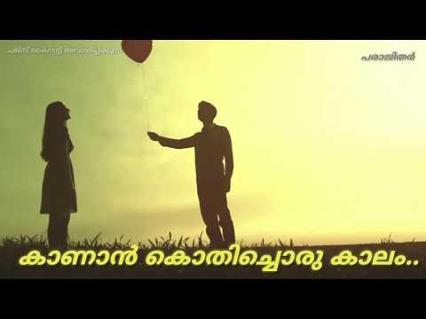 Status Video Malayalam  Whatsapp Video   |  Whatsapp Video Hd, |  Whatsapp Video 2019