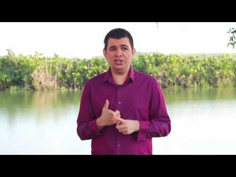 Видео Modelo de introdução de monografia