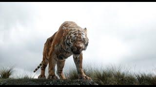 Маугли спасается от Шер Хана Книга джунглей отрывок из фильма